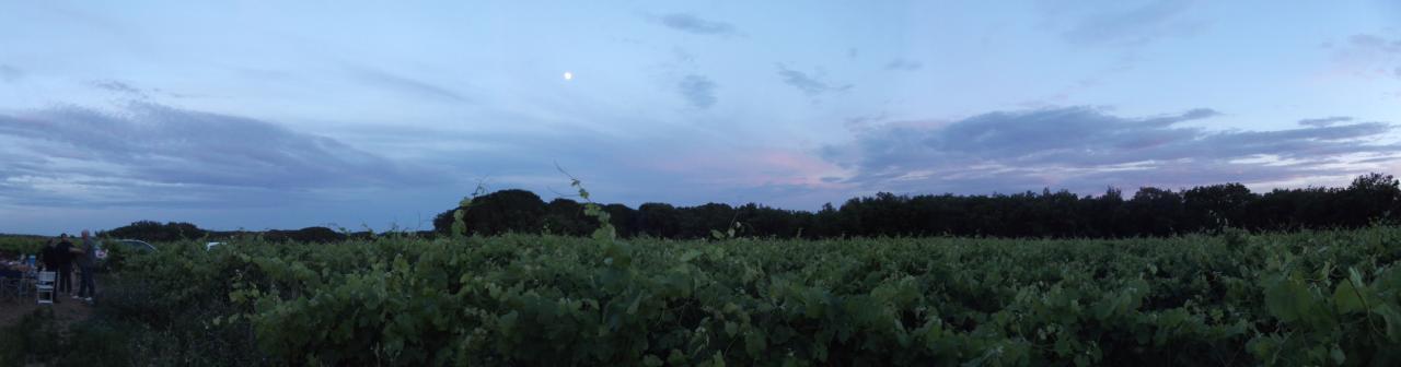 Panorama avec la Lune